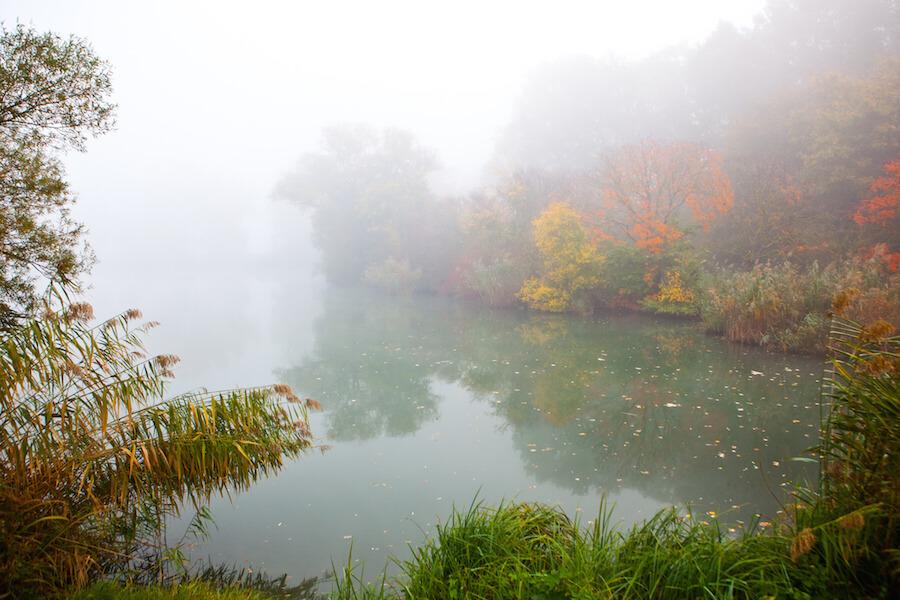 Sárvár tó ősszel